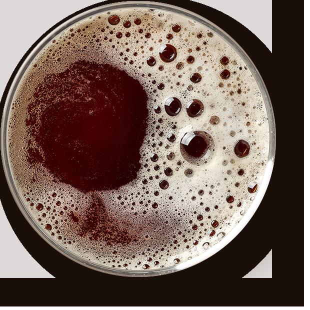 https://bierfestivalemmen.nl/wp-content/uploads/2017/05/beer_transparent.png